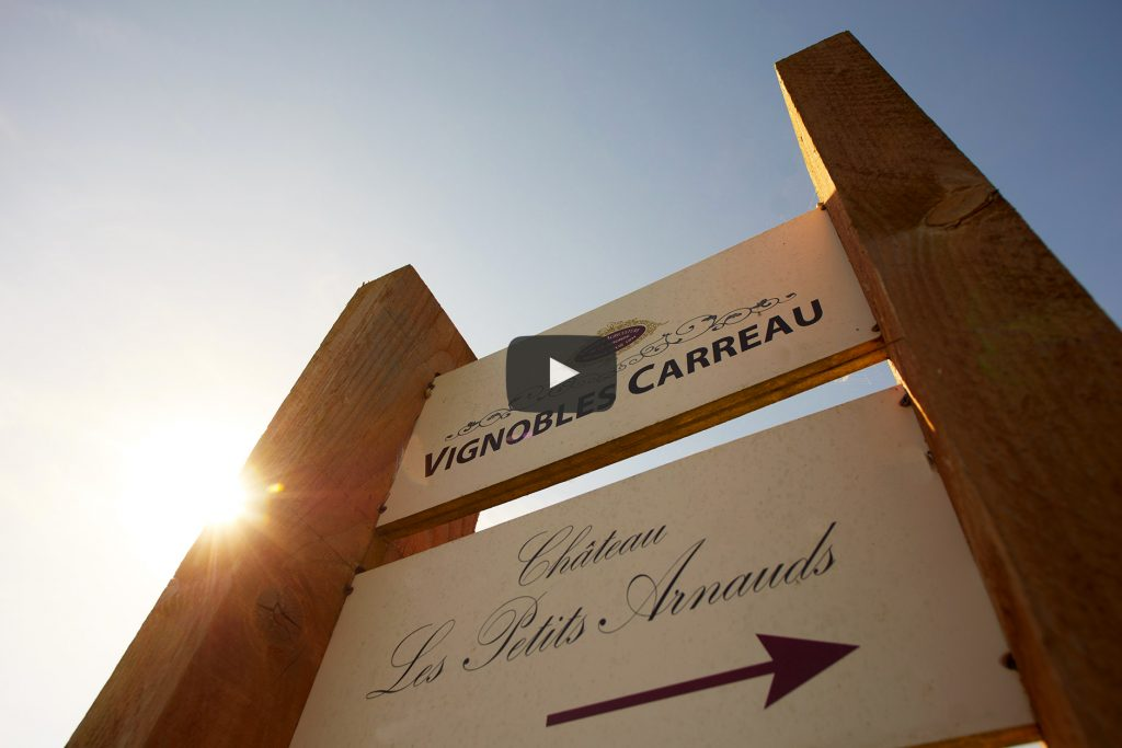 Visite-Virtuelle-Vignobles-Carreau-Selection